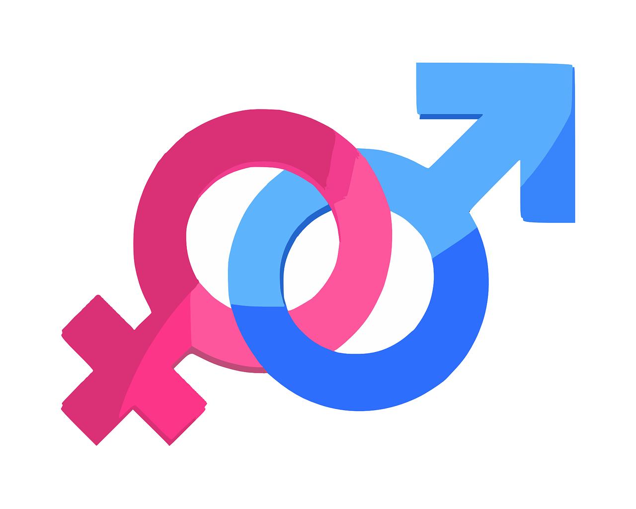 Genderdiversiteit.png
